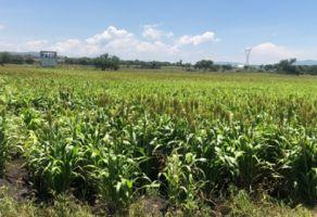 Foto de terreno industrial en venta en El Pueblito, Corregidora, Querétaro, 10256293,  no 01