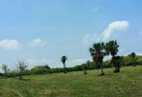 Foto de terreno habitacional en venta en  , fecapomex, tuxpan, veracruz de ignacio de la llave, 16290205 No. 01