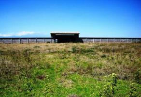 Foto de terreno habitacional en venta en federal a atlixco , santa maría tonantzintla, san andrés cholula, puebla, 12984390 No. 01