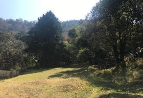 Foto de terreno habitacional en venta en felipe flores , santa cecilia tepetlapa, xochimilco, df / cdmx, 14475994 No. 01