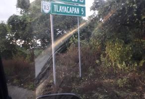 Foto de terreno habitacional en venta en felipe neri , tlayacapan, tlayacapan, morelos, 14228769 No. 01