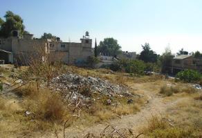 Foto de terreno habitacional en venta en felix ma. samaniego 21 , amado nervo, tultepec, méxico, 0 No. 01