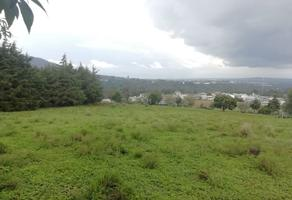 Foto de terreno habitacional en venta en  , ferrería de apulco, metepec, hidalgo, 7659593 No. 01