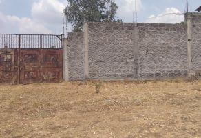 Foto de terreno habitacional en venta en Acuitzio del Canje, Acuitzio, Michoacán de Ocampo, 20632926,  no 01