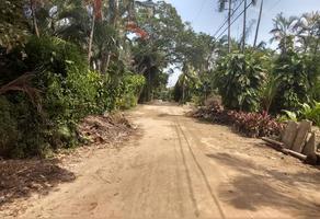 Foto de terreno habitacional en venta en ficus 2, parque ecológico de viveristas, acapulco de juárez, guerrero, 17078295 No. 02