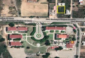 Foto de terreno habitacional en venta en ficus , lomas de santa cruz, santa cruz xoxocotlán, oaxaca, 18920120 No. 01