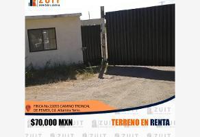 Foto de terreno habitacional en renta en finca numero 22055 camino troncal de pemex 22055, las blancas, altamira, tamaulipas, 0 No. 01