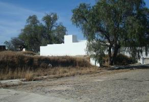Foto de terreno habitacional en venta en flamingos , tequisquiapan centro, tequisquiapan, querétaro, 0 No. 01