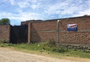Foto de terreno habitacional en venta en flor de azucena , el zapote del valle, tlajomulco de zúñiga, jalisco, 12477867 No. 01