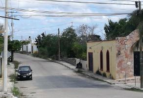Foto de terreno habitacional en venta en  , flor de mayo, kanasín, yucatán, 0 No. 01