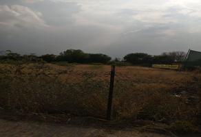 Foto de terreno comercial en venta en flore de durazno 255, villa de pozos, san luis potosí, san luis potosí, 0 No. 01