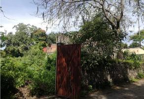 Foto de bodega en venta en  , centro, xochitepec, morelos, 9672292 No. 01