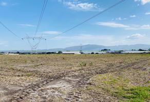 Foto de terreno habitacional en venta en fraccion 249, la capilla, ixtlahuacán de los membrillos, jalisco, 0 No. 01