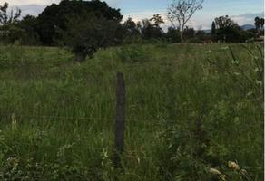 Foto de terreno habitacional en venta en fracción 25 predio el refugio kilometro 21.5 carretera chapala , ixtlahuacan de los membrillos, ixtlahuacán de los membrillos, jalisco, 6375419 No. 02