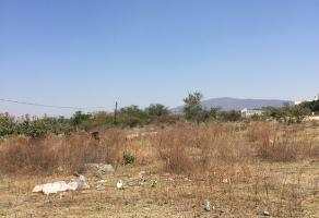 Foto de terreno habitacional en venta en fraccion b1 letra b , san gaspar de las flores, tonalá, jalisco, 0 No. 01