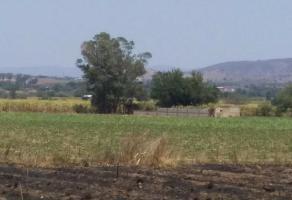 Foto de terreno habitacional en venta en fraccion del predio rustico como parcela , huaxtla, el arenal, jalisco, 6434488 No. 01