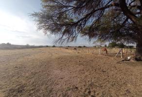 Foto de terreno comercial en venta en fraccion oriente parcela 194 , el nayar, durango, durango, 0 No. 01