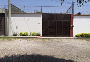 Foto de casa en renta en fraccionamiento brisas de cuautla , brisas de cuautla, cuautla, morelos, 0 No. 01