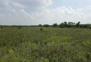 Foto de rancho en renta en fraccionamiento del predio del cojo y anexos de aldama , aldama, aldama, tamaulipas, 18155075 No. 01