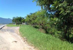 Foto de terreno comercial en venta en fraccionamiento el cielo , canoas, montemorelos, nuevo león, 15237843 No. 01