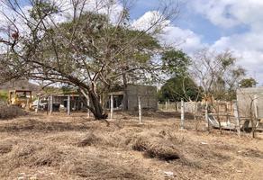 Foto de terreno habitacional en venta en fraccionamiento ficus campestre s/n , la lucerna, san pedro mixtepec dto. 22, oaxaca, 0 No. 01