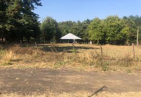 Foto de terreno habitacional en venta en fraccionamiento granjas de santa fé , charanguerán, uruapan, michoacán de ocampo, 0 No. 01