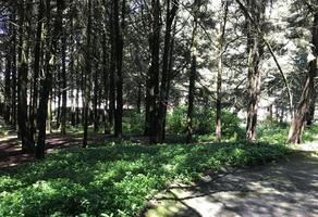 Foto de terreno habitacional en venta en fraccionamiento hacienda jajalpa , centro ocoyoacac, ocoyoacac, méxico, 9213717 No. 01