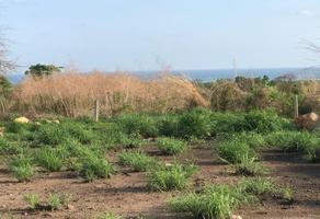 Foto de terreno habitacional en venta en fraccionamiento las torres puerto escondido , la barra de colotepec, santa maría colotepec, oaxaca, 0 No. 01