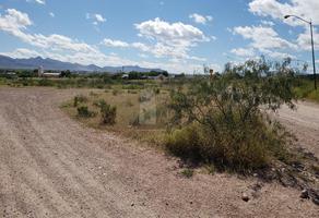 Foto de terreno comercial en venta en fraccionamiento las virgenes , santo domingo, chihuahua, chihuahua, 5983198 No. 01