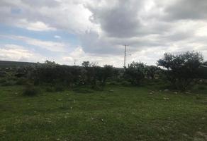 Foto de terreno habitacional en venta en fraccionamiento pedregal de san antonio , camino a san juan, león, guanajuato, 0 No. 01