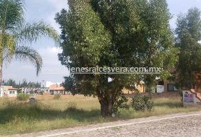 Foto de terreno habitacional en venta en fraccionamiento real del ciervo , tequisquiapan centro, tequisquiapan, querétaro, 14159114 No. 01
