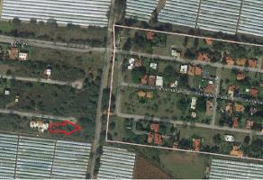 Foto de terreno habitacional en venta en fraccionamiento roca azul , jocotepec centro, jocotepec, jalisco, 7059223 No. 05