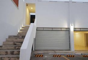 Foto de local en renta en  , francisco de montejo, mérida, yucatán, 14116245 No. 01
