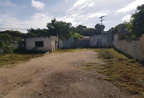 Foto de terreno habitacional en venta en  , francisco i madero, mérida, yucatán, 18479753 No. 01