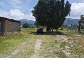 Foto de terreno habitacional en venta en francisco javier mina sin número, san pablo etla, san pablo etla, oaxaca, 0 No. 01