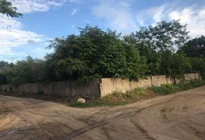 Foto de terreno habitacional en venta en  , francisco medrano, altamira, tamaulipas, 11288768 No. 01