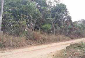 Foto de terreno habitacional en venta en  , francisco medrano, altamira, tamaulipas, 11700989 No. 01