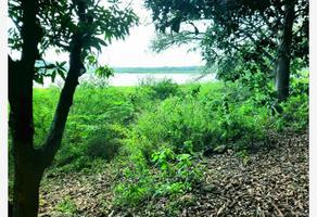 Foto de terreno comercial en venta en  , francisco medrano, altamira, tamaulipas, 12209120 No. 01