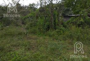 Foto de terreno habitacional en venta en  , francisco medrano, altamira, tamaulipas, 12826327 No. 01
