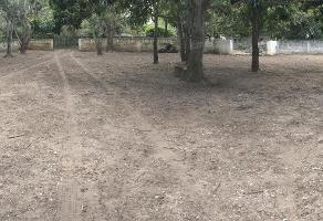 Foto de terreno habitacional en venta en  , francisco medrano, altamira, tamaulipas, 14408452 No. 01