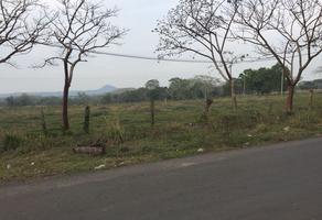 Foto de terreno comercial en venta en francisco villa , francisco villa, veracruz, veracruz de ignacio de la llave, 17870324 No. 01
