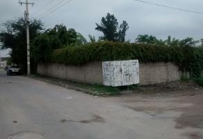 Foto de terreno habitacional en venta en francisco y madero 201 , las pintas, el salto, jalisco, 5445702 No. 02