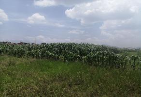 Foto de terreno habitacional en venta en fray servando teresa de mier , san mateo otzacatipan, toluca, méxico, 0 No. 01
