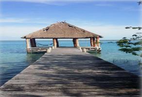 Foto de rancho en venta en frente a la laguna , bacalar, bacalar, quintana roo, 16876577 No. 01