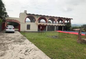 Foto de terreno habitacional en venta en frente a rancho alegre , rancho alegre, tlajomulco de zúñiga, jalisco, 11505021 No. 02