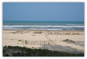 Foto de terreno habitacional en venta en frente de playa, a 2 kms. aprox. de isla tajin. , tampamachoco, tuxpan, veracruz de ignacio de la llave, 0 No. 01