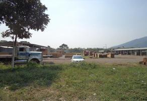 Foto de terreno habitacional en venta en fundición , el tecolote, colima, colima, 11099502 No. 01