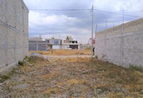Foto de terreno habitacional en venta en futbol , san miguel, zinacantepec, méxico, 0 No. 01