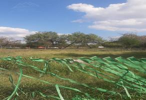 Foto de terreno habitacional en renta en  , futuro apodaca, apodaca, nuevo león, 21044117 No. 01