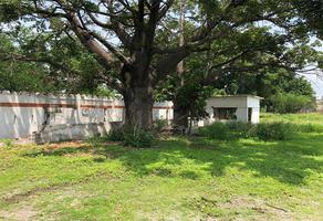Foto de terreno habitacional en venta en  , galeana centro, zacatepec, morelos, 0 No. 01